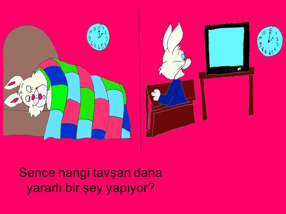 Sence hangi tavşan daha yararlı bir şey yapıyor