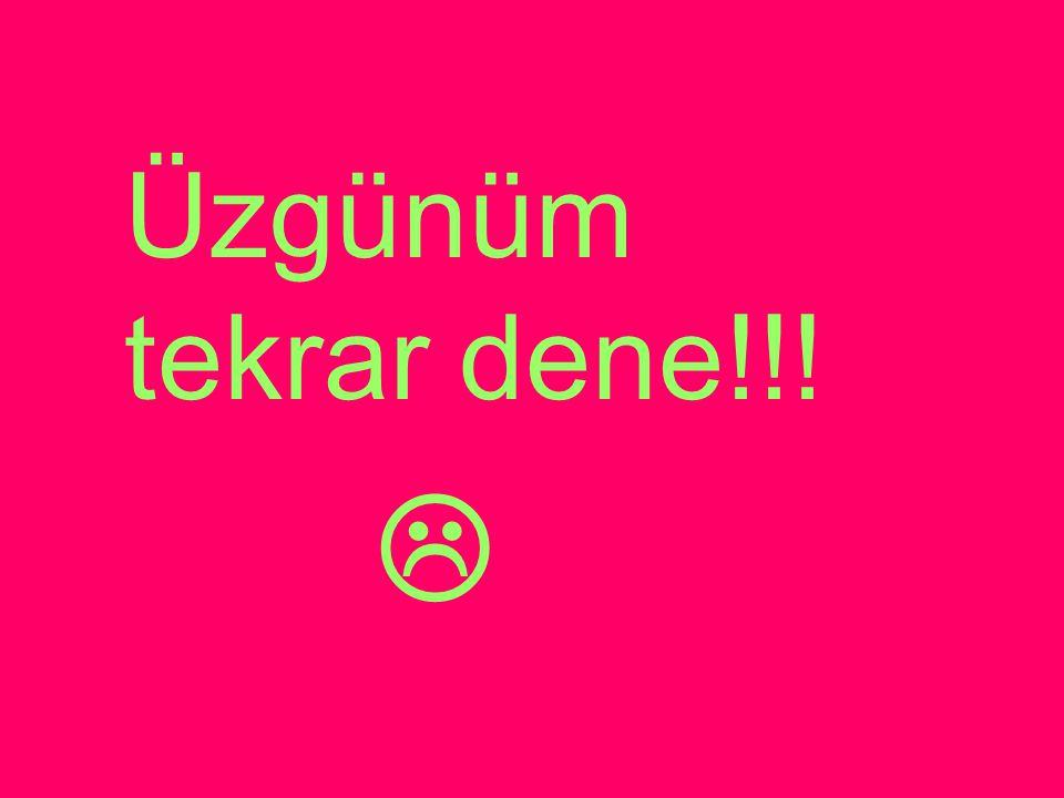 Üzgünüm tekrar dene!!! 