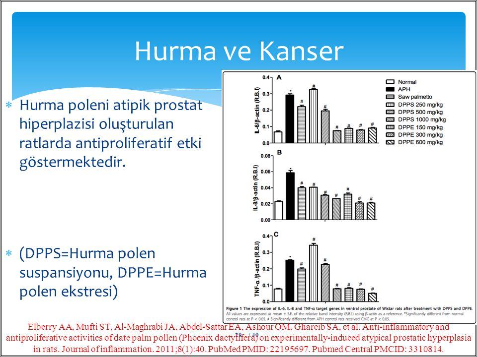 Hurma ve Kanser Hurma poleni atipik prostat hiperplazisi oluşturulan ratlarda antiproliferatif etki göstermektedir.