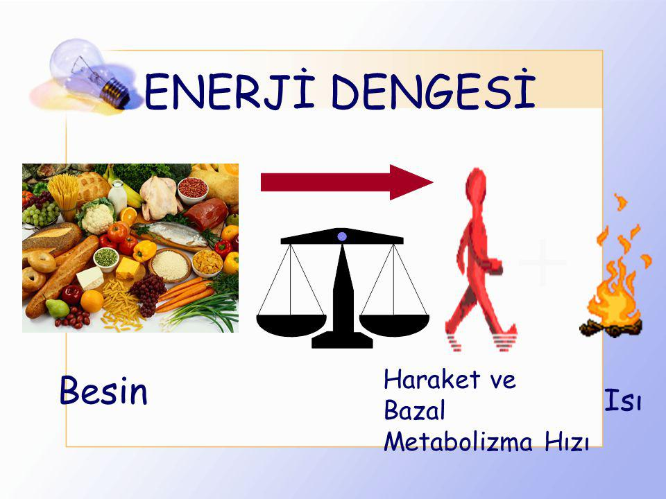 ENERJİ DENGESİ + Haraket ve Bazal Metabolizma Hızı Besin Isı