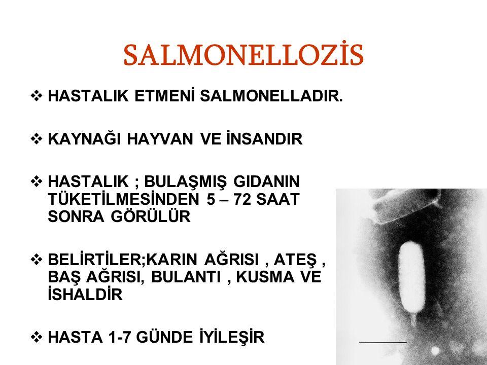 SALMONELLOZİS HASTALIK ETMENİ SALMONELLADIR.