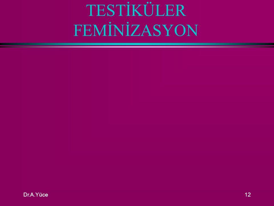 TESTİKÜLER FEMİNİZASYON
