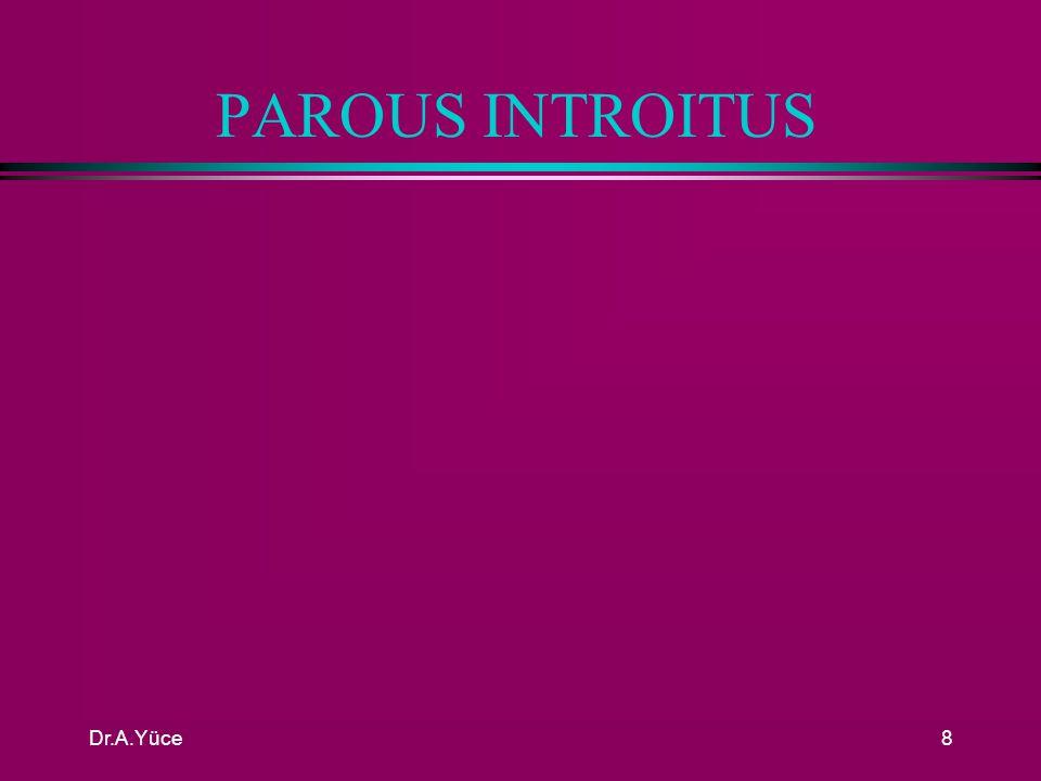 PAROUS INTROITUS Dr.A.Yüce