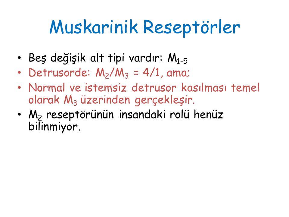 Muskarinik Reseptörler