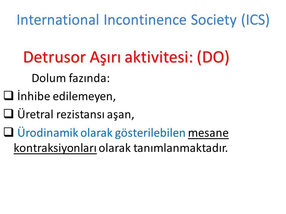 International Incontinence Society (ICS)