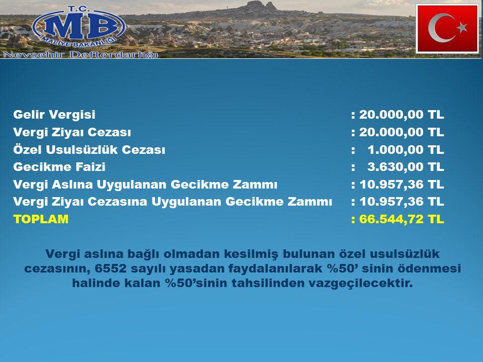 Gelir Vergisi : 20.000,00 TL Vergi Ziyaı Cezası : 20.000,00 TL. Özel Usulsüzlük Cezası : 1.000,00 TL.