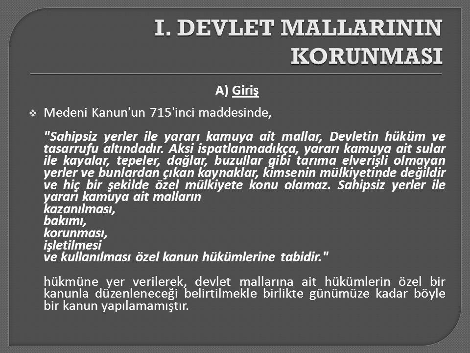 I. DEVLET MALLARININ KORUNMASI