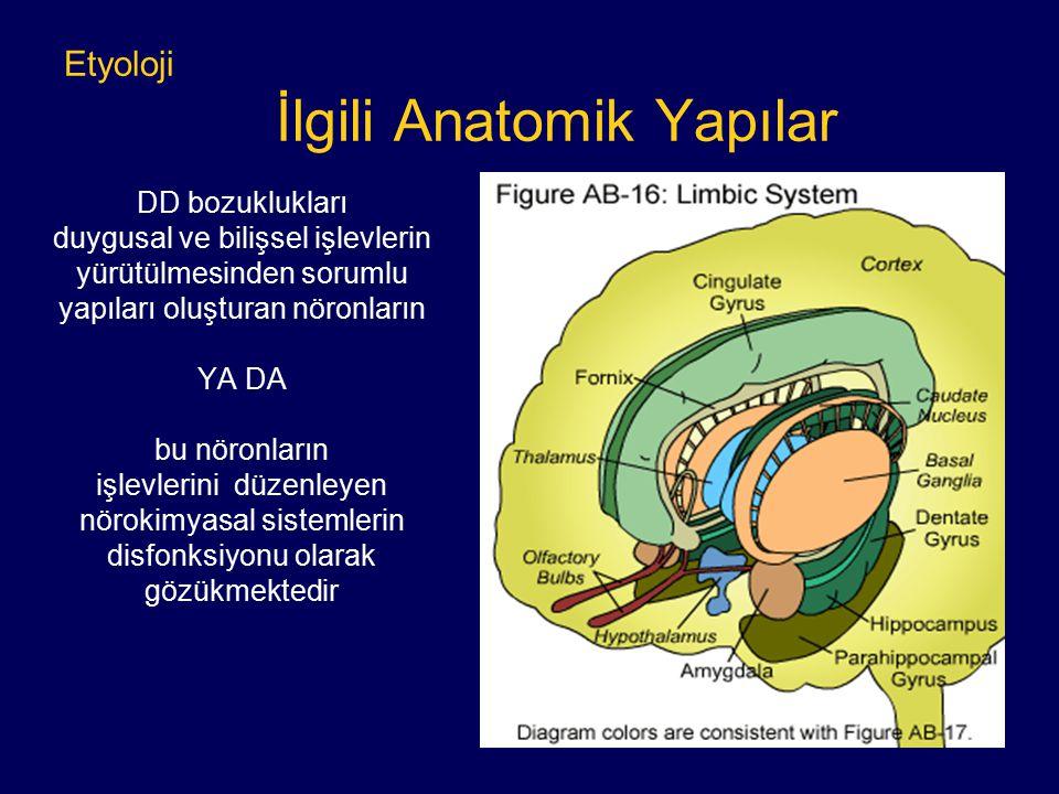 Etyoloji İlgili Anatomik Yapılar