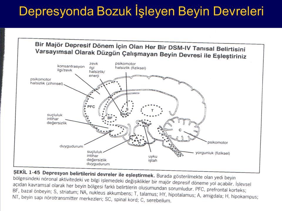 Depresyonda Bozuk İşleyen Beyin Devreleri