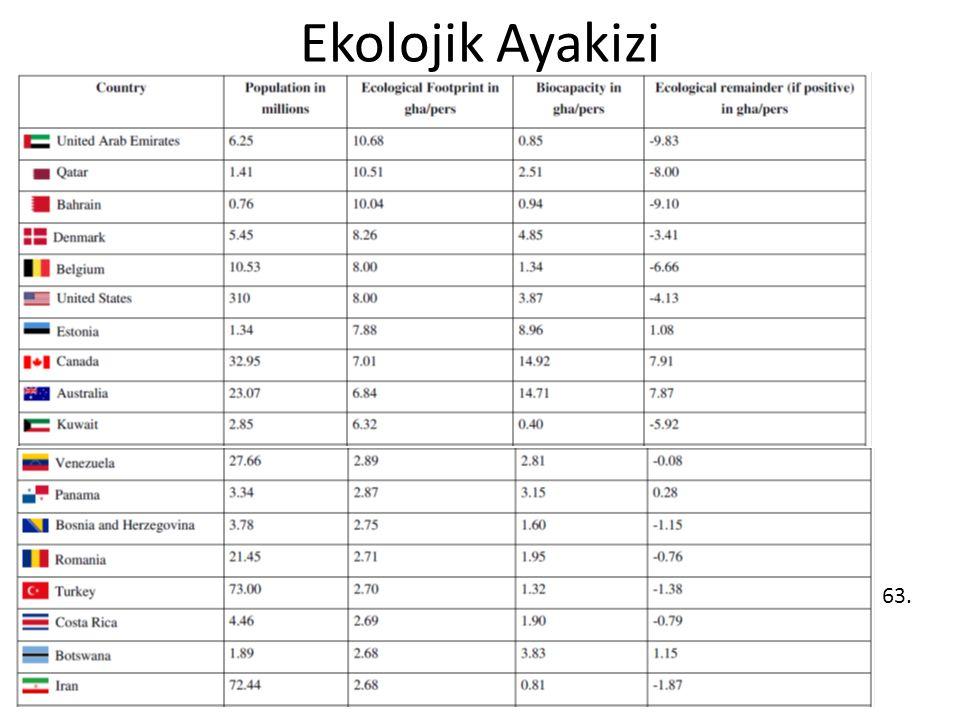 Ekolojik Ayakizi 63.