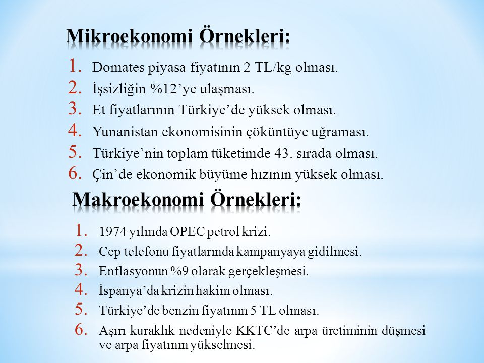 Mikroekonomi Örnekleri: