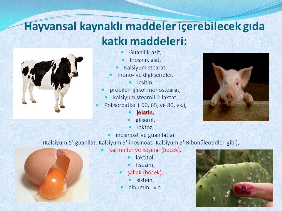 Hayvansal kaynaklı maddeler içerebilecek gıda katkı maddeleri: