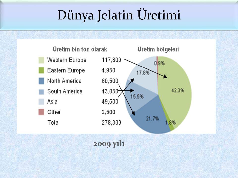 Dünya Jelatin Üretimi 2009 yılı