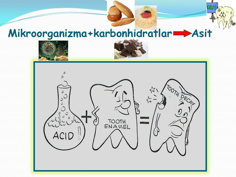 Mikroorganizma+karbonhidratlar Asit