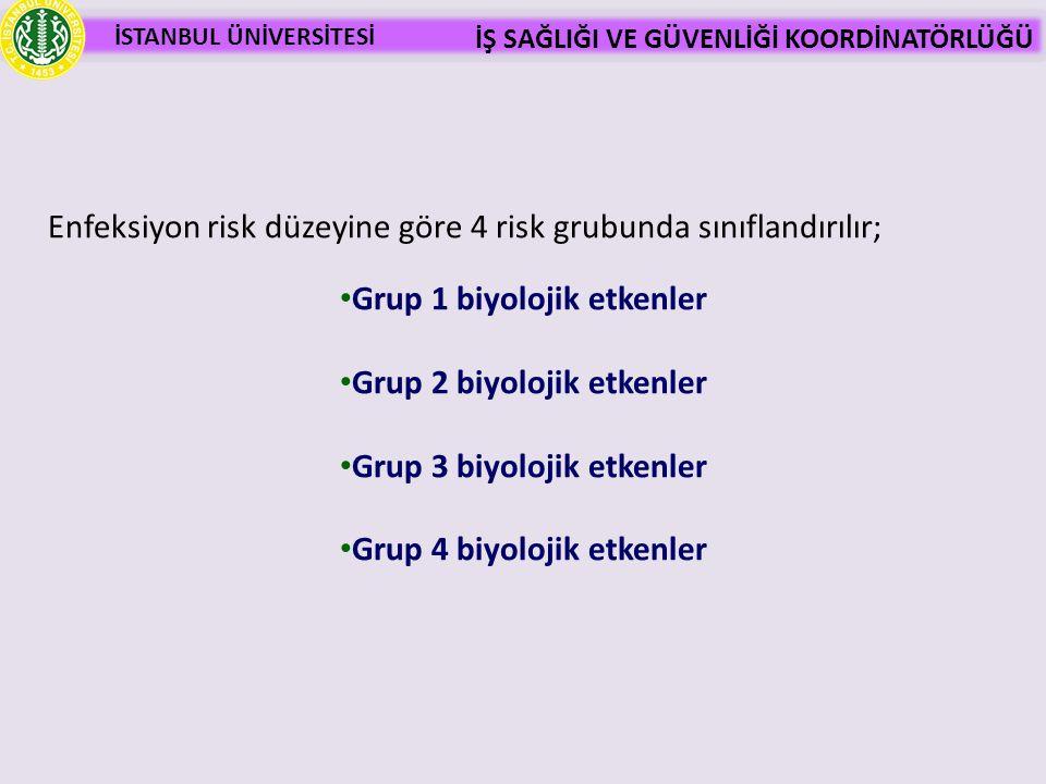 Grup 4 biyolojik etkenler