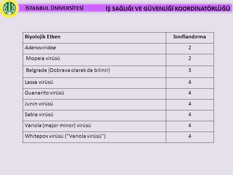 Belgrade (Dobrava olarak da bilinir) 3 Lassa virüsü 4 Guanarito virüsü