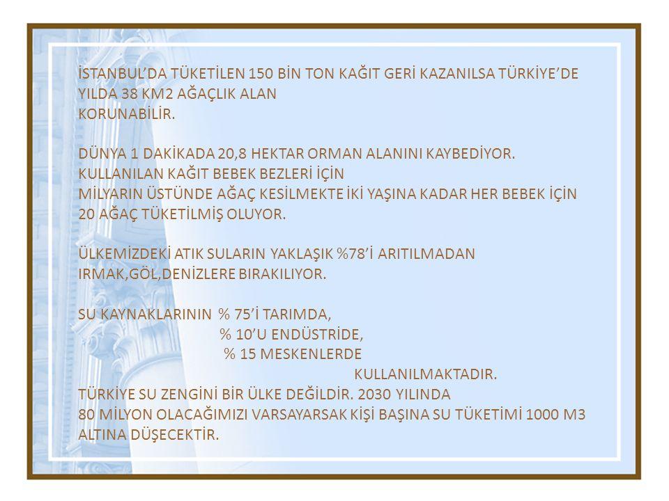 İSTANBUL'DA TÜKETİLEN 150 BİN TON KAĞIT GERİ KAZANILSA TÜRKİYE'DE YILDA 38 KM2 AĞAÇLIK ALAN