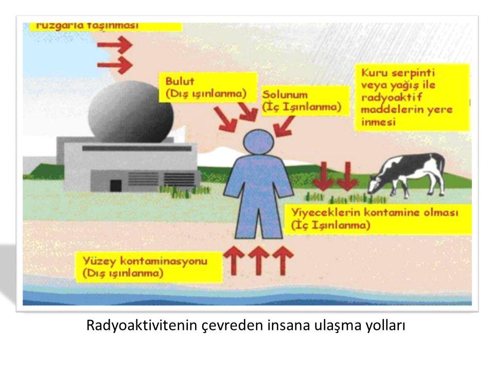 Radyoaktivitenin çevreden insana ulaşma yolları