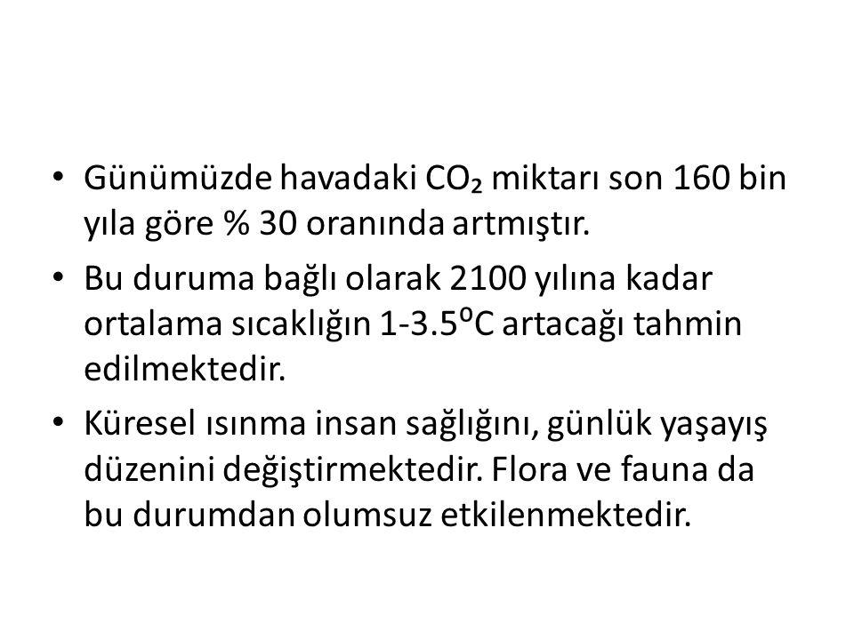 Günümüzde havadaki CO₂ miktarı son 160 bin yıla göre % 30 oranında artmıştır.