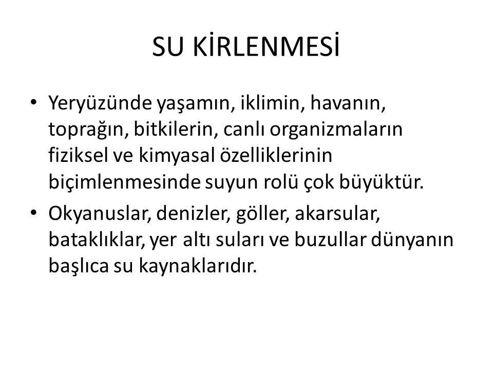 SU KİRLENMESİ