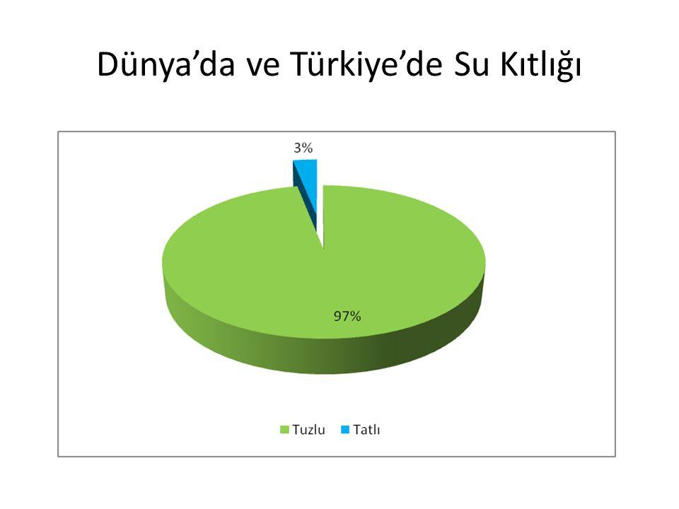 Dünya'da ve Türkiye'de Su Kıtlığı