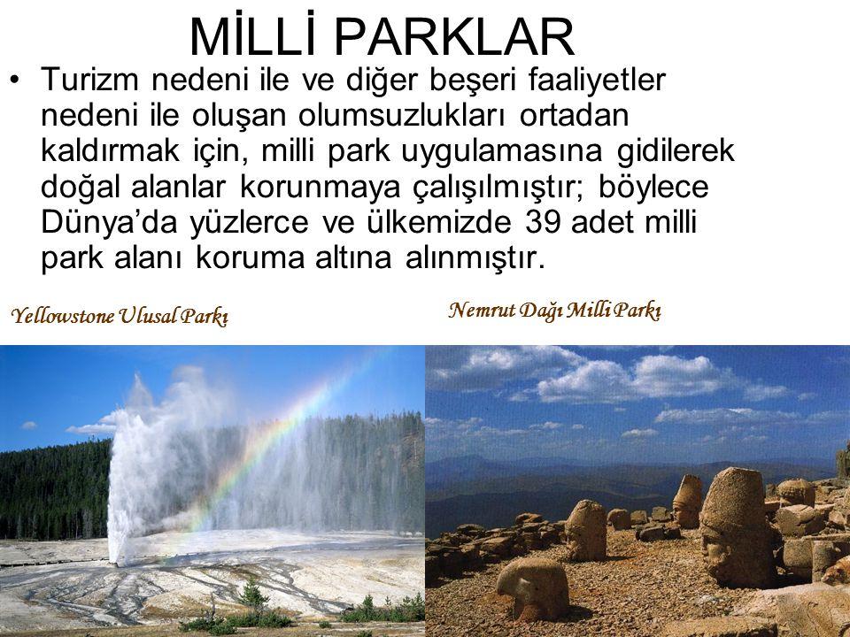 MİLLİ PARKLAR