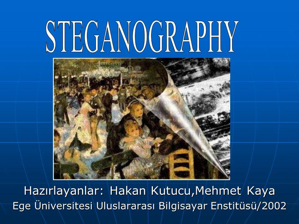 STEGANOGRAPHY Hazırlayanlar: Hakan Kutucu,Mehmet Kaya