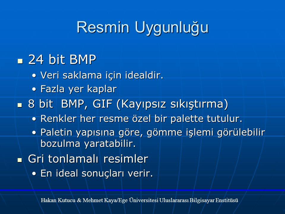 Resmin Uygunluğu 24 bit BMP 8 bit BMP, GIF (Kayıpsız sıkıştırma)