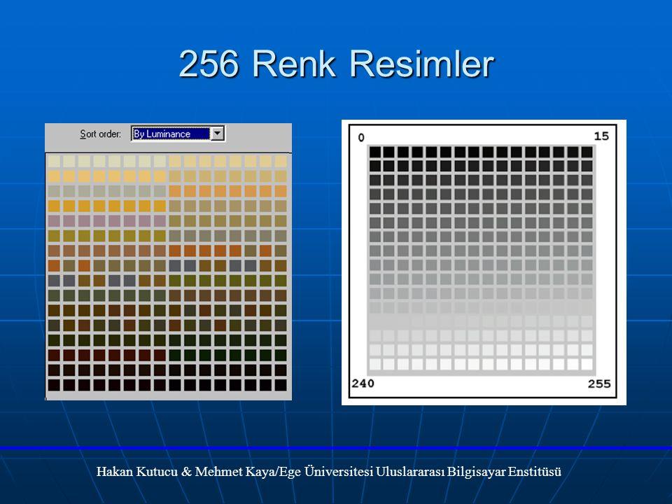 256 Renk Resimler Hakan Kutucu & Mehmet Kaya/Ege Üniversitesi Uluslararası Bilgisayar Enstitüsü