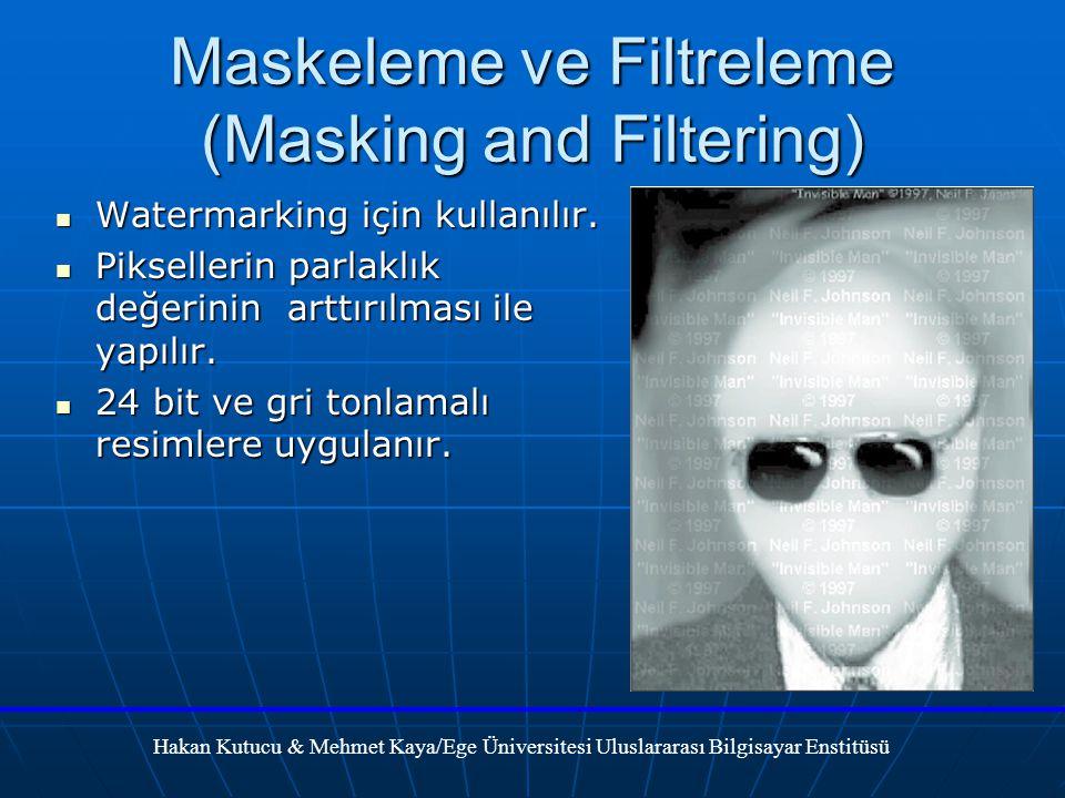 Maskeleme ve Filtreleme (Masking and Filtering)