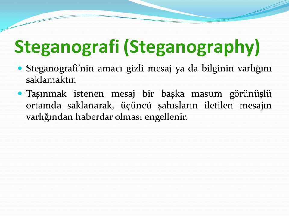 Steganografi (Steganography)