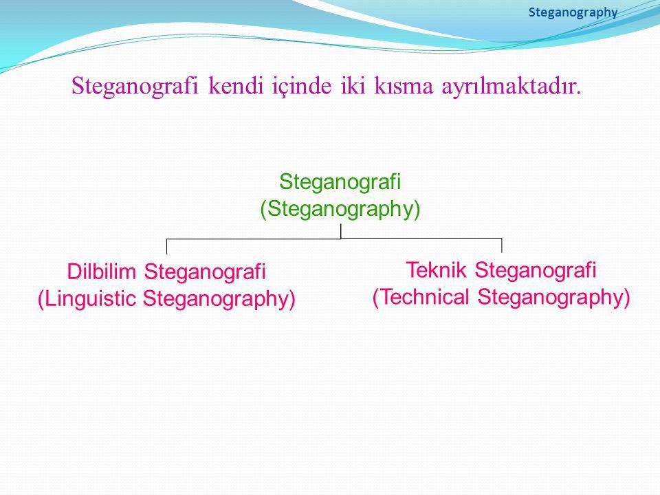 Steganografi kendi içinde iki kısma ayrılmaktadır.