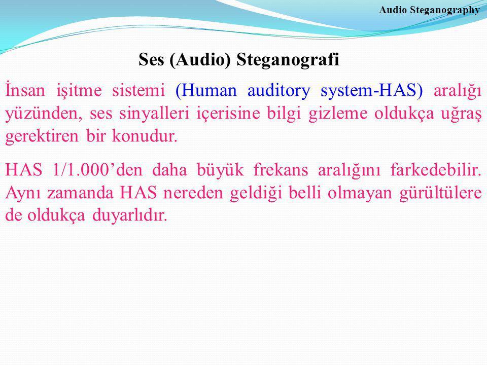 Ses (Audio) Steganografi