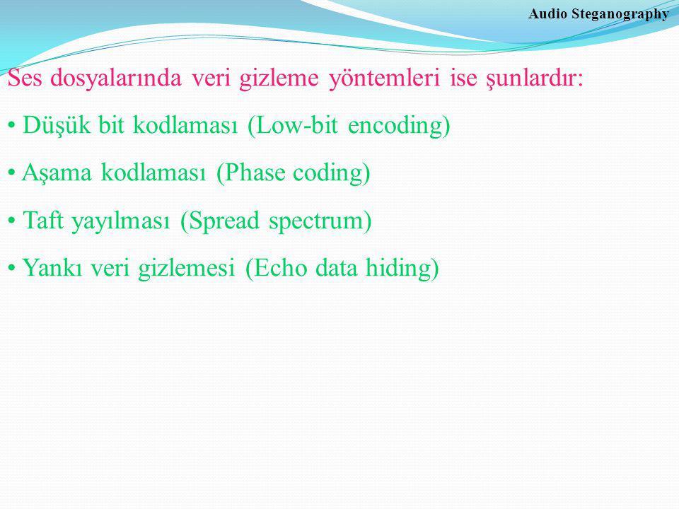 Ses dosyalarında veri gizleme yöntemleri ise şunlardır: