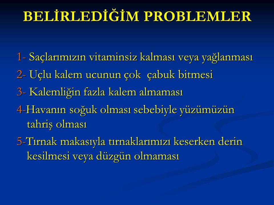 BELİRLEDİĞİM PROBLEMLER