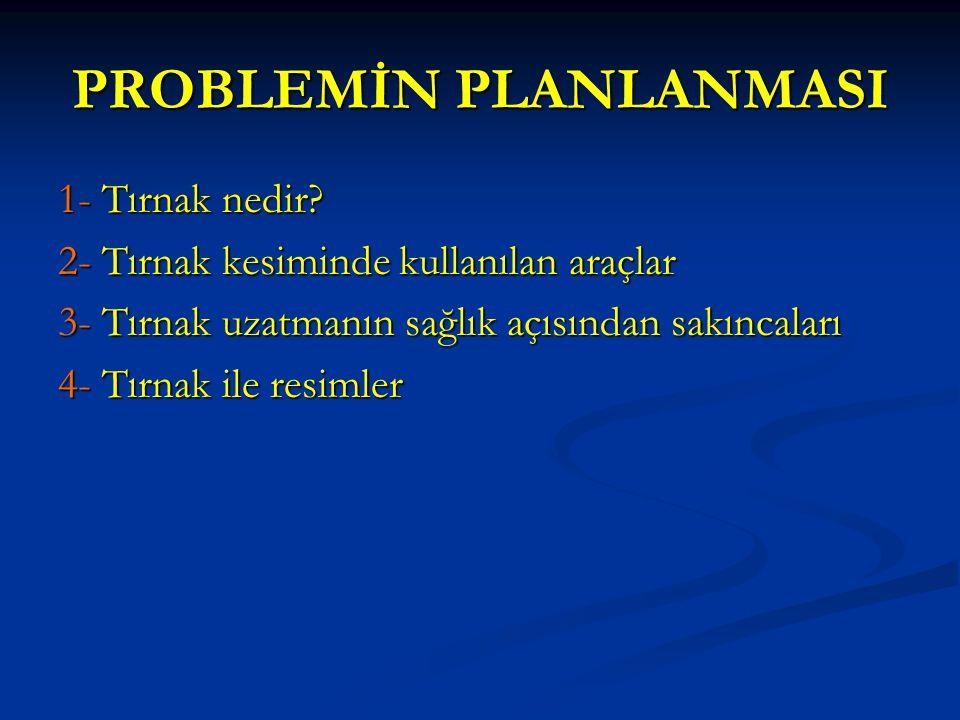 PROBLEMİN PLANLANMASI