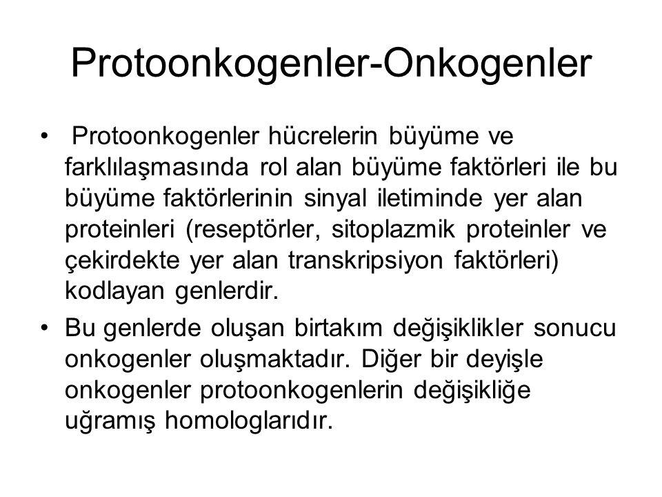 Protoonkogenler-Onkogenler