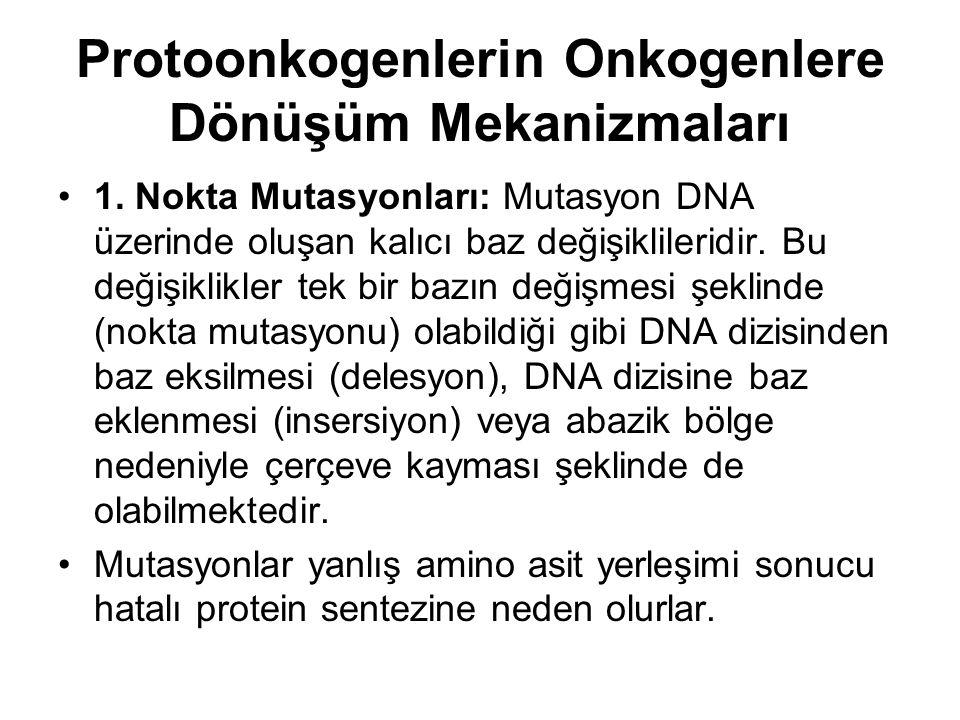 Protoonkogenlerin Onkogenlere Dönüşüm Mekanizmaları
