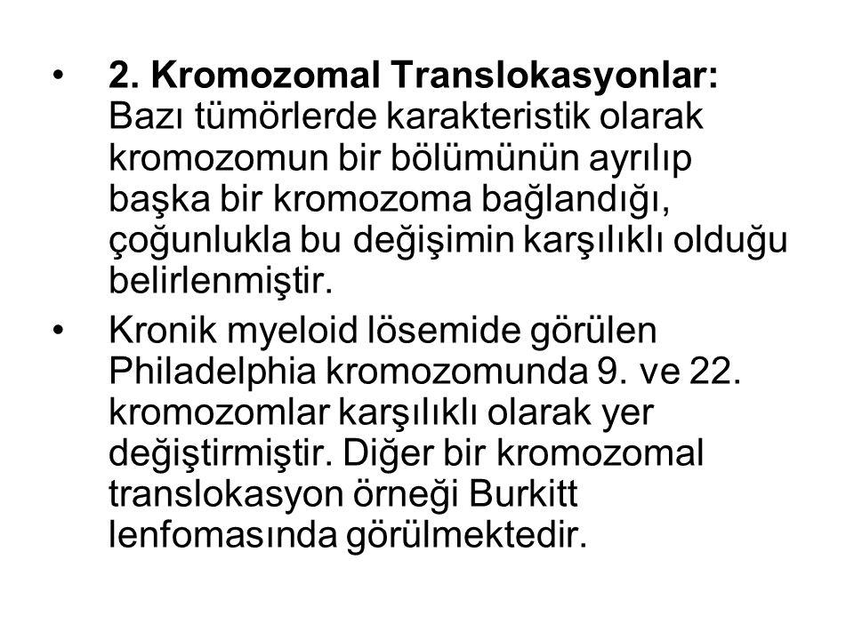 2. Kromozomal Translokasyonlar: Bazı tümörlerde karakteristik olarak kromozomun bir bölümünün ayrılıp başka bir kromozoma bağlandığı, çoğunlukla bu değişimin karşılıklı olduğu belirlenmiştir.