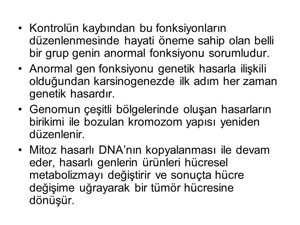 Kontrolün kaybından bu fonksiyonların düzenlenmesinde hayati öneme sahip olan belli bir grup genin anormal fonksiyonu sorumludur.