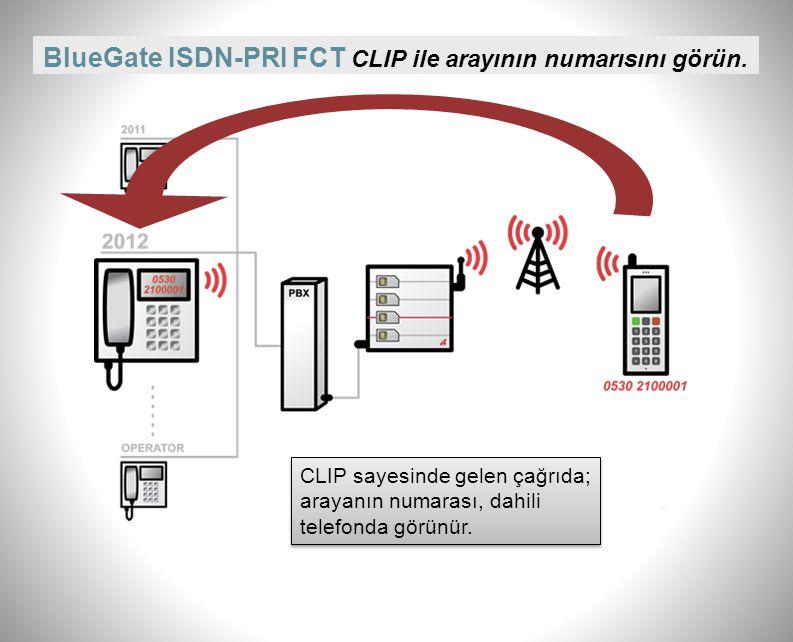 BlueGate ISDN-PRI FCT CLIP ile arayının numarısını görün.