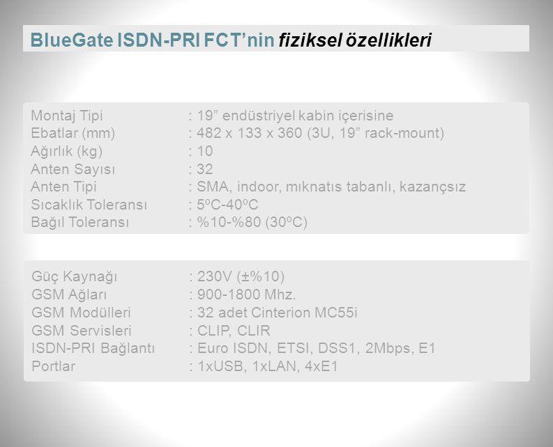 BlueGate ISDN-PRI FCT'nin fiziksel özellikleri
