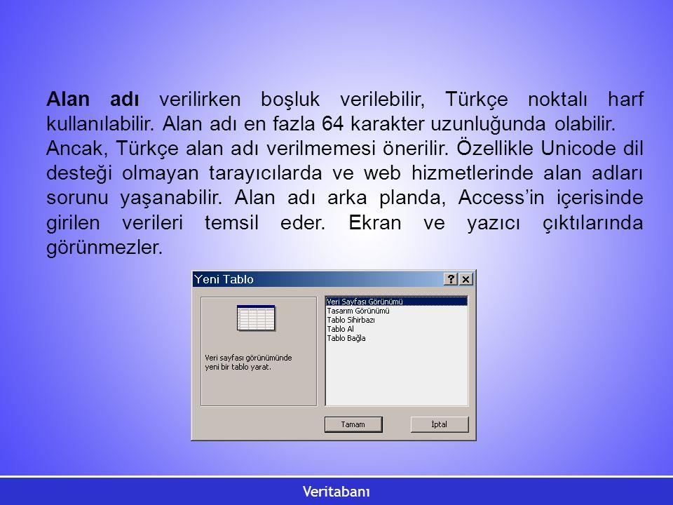 Alan adı verilirken boşluk verilebilir, Türkçe noktalı harf kullanılabilir. Alan adı en fazla 64 karakter uzunluğunda olabilir.