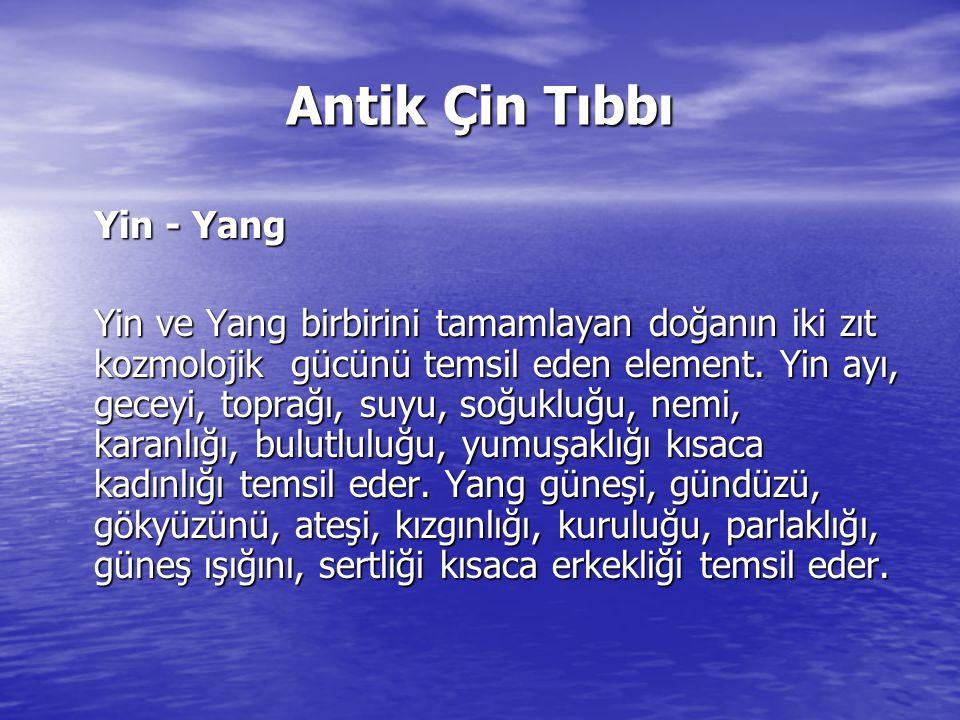 Antik Çin Tıbbı Yin - Yang