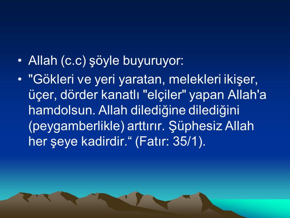 Allah (c.c) şöyle buyuruyor: