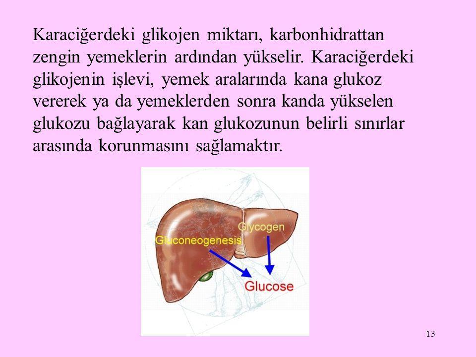 Karaciğerdeki glikojen miktarı, karbonhidrattan zengin yemeklerin ardından yükselir.