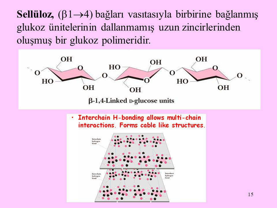 Sellüloz, (14) bağları vasıtasıyla birbirine bağlanmış glukoz ünitelerinin dallanmamış uzun zincirlerinden oluşmuş bir glukoz polimeridir.