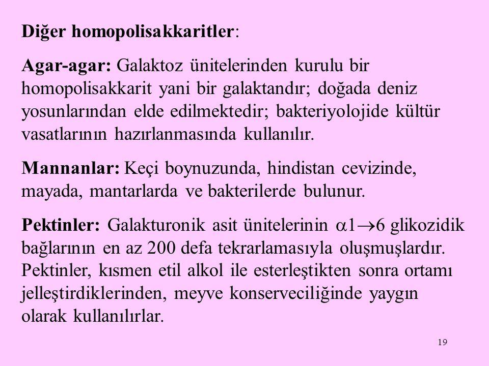Diğer homopolisakkaritler:
