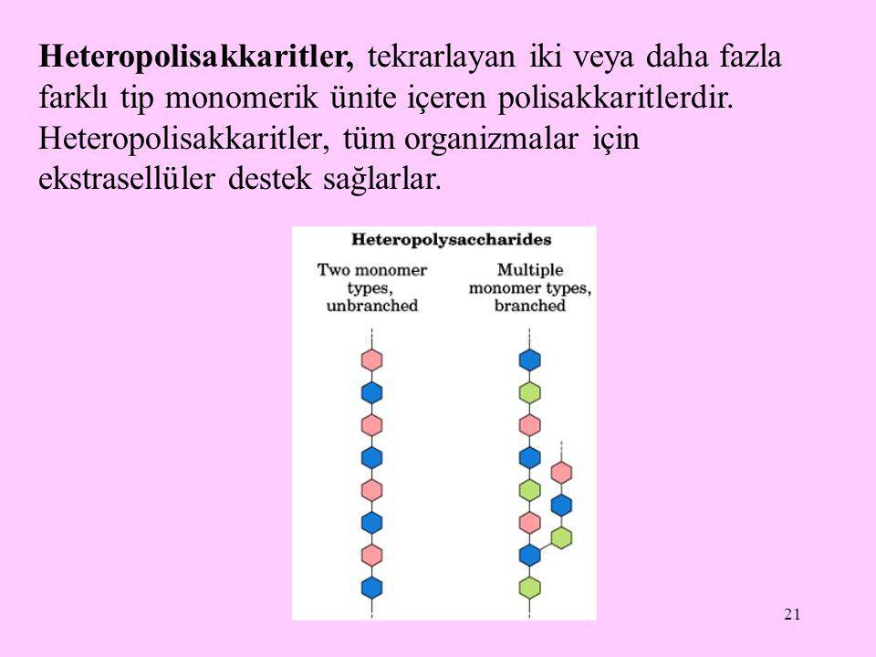 Heteropolisakkaritler, tekrarlayan iki veya daha fazla farklı tip monomerik ünite içeren polisakkaritlerdir.