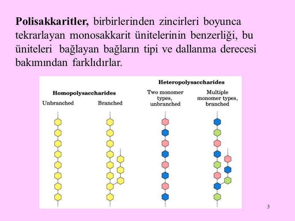 Polisakkaritler, birbirlerinden zincirleri boyunca tekrarlayan monosakkarit ünitelerinin benzerliği, bu üniteleri bağlayan bağların tipi ve dallanma derecesi bakımından farklıdırlar.